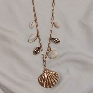 Mixed Lovely Seashell Necklace